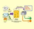 Thumb_acromec_biogas3